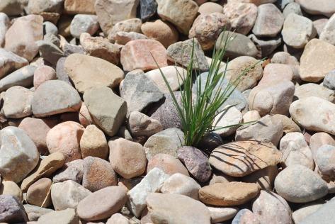 pebbles-357659_960_720